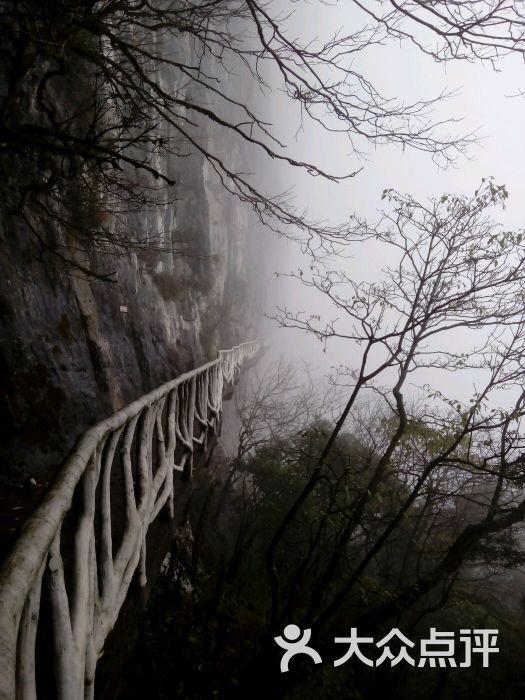 金佛山国家级风景区-图片-南川区景点-大众点评网