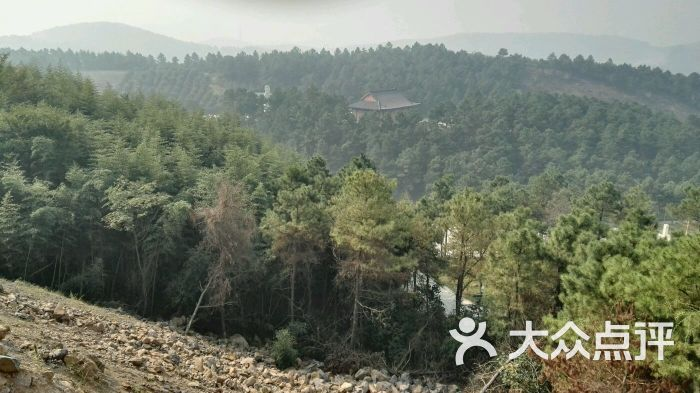南京大金山风景区-图片-南京景点-大众点评网