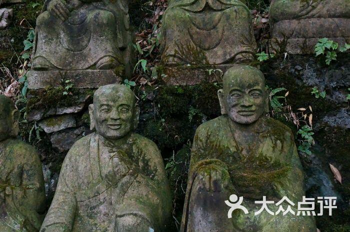 芙蓉谷风景区-图片-安吉县景点-大众点评网